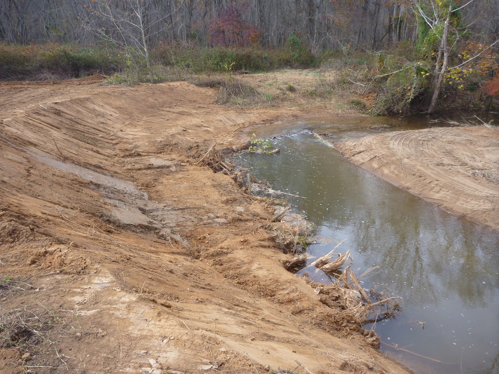 Rose-Creek-Mitigation-Project.JPG