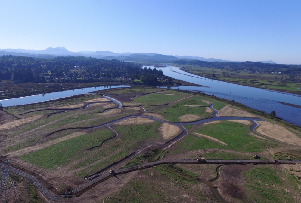Historic Tidal Channel Restoration