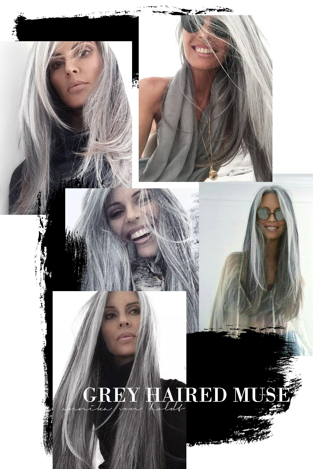 Silver Fox Kingdom Of Style
