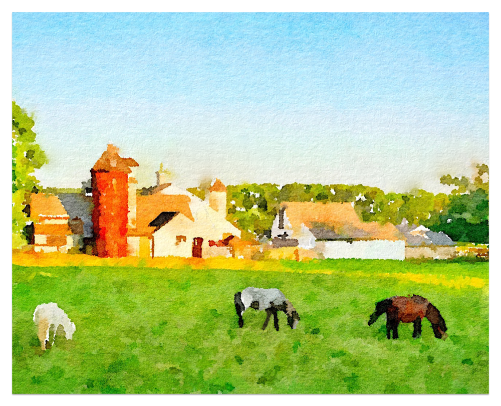 Small Horse Farm.png