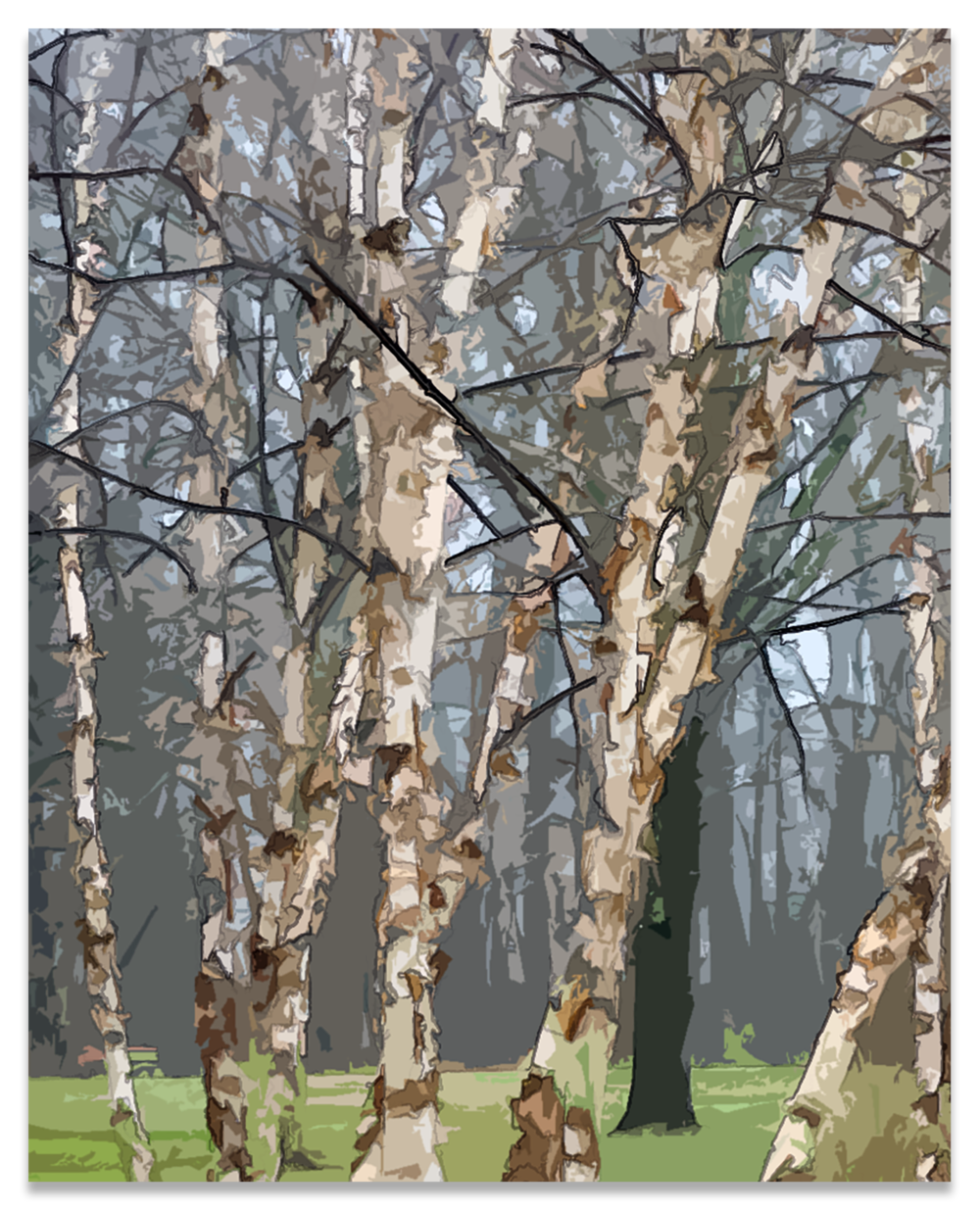 20170406 -Birch crop- P4060599.png