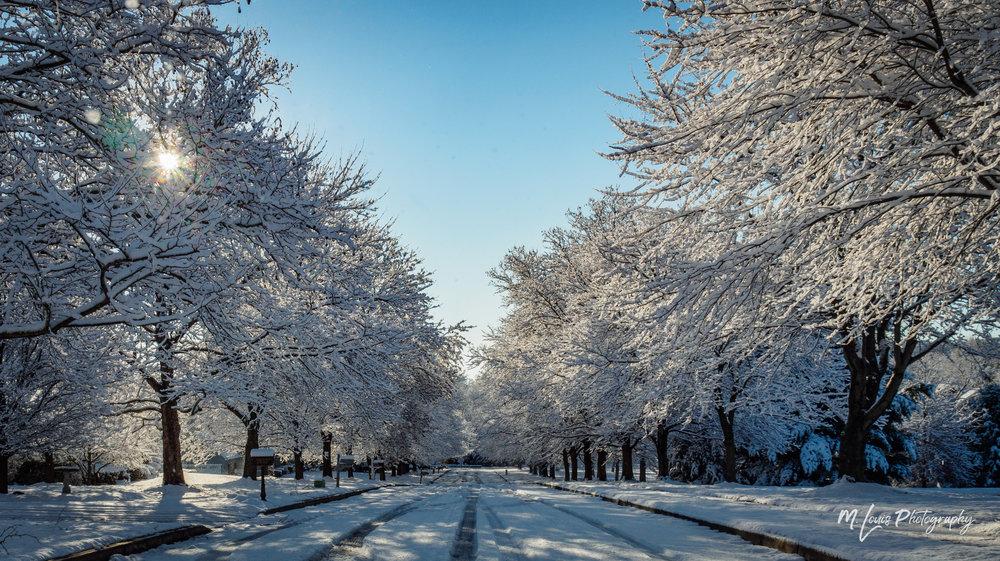 20180218 -Snow on Feb 17, 2018 - P2180139.jpg