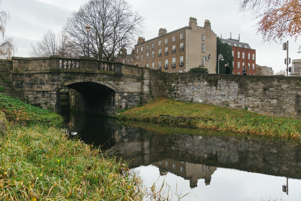 RSA-Ireland41.jpg