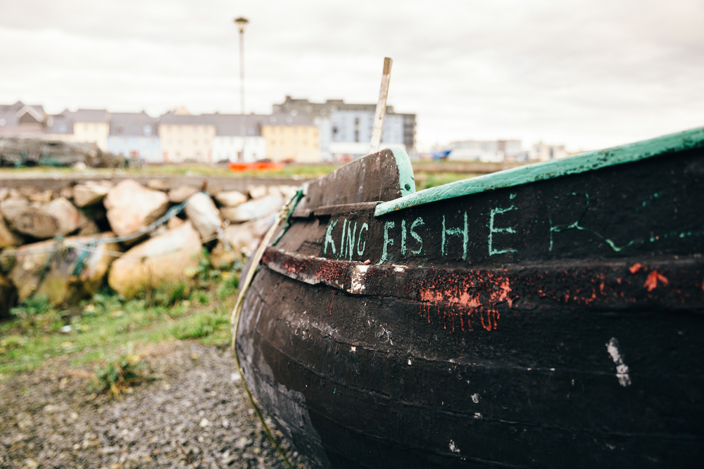 RSA-Ireland150.jpg
