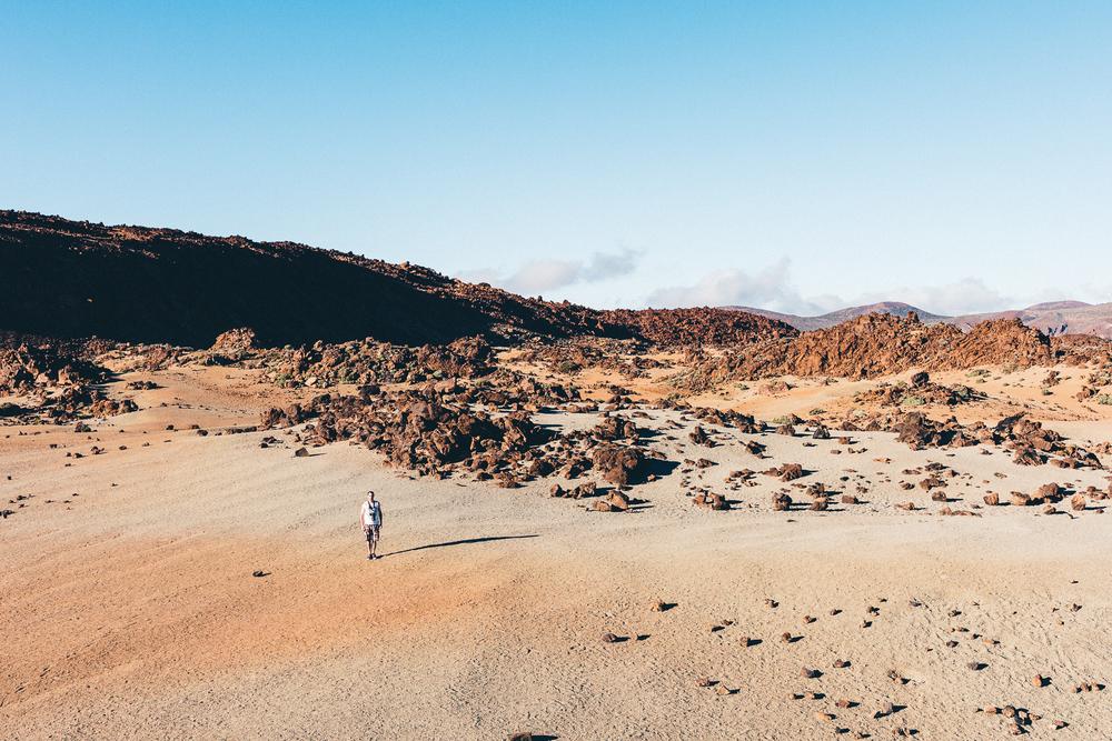 Tenerife-Apr_2016-626.jpg