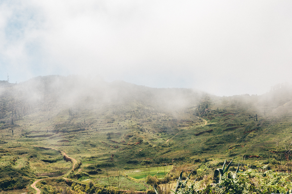 Tenerife-Apr_2016-891.jpg