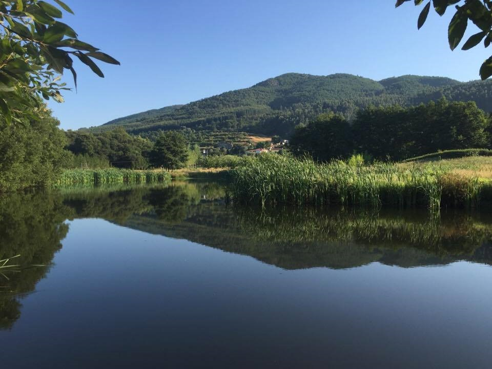 lake in the grounds portugal.jpg