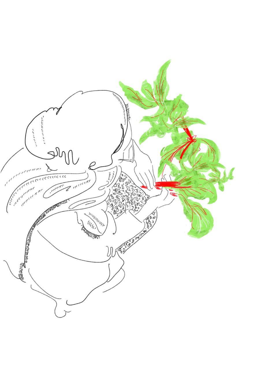 sketch7thfgn.jpg