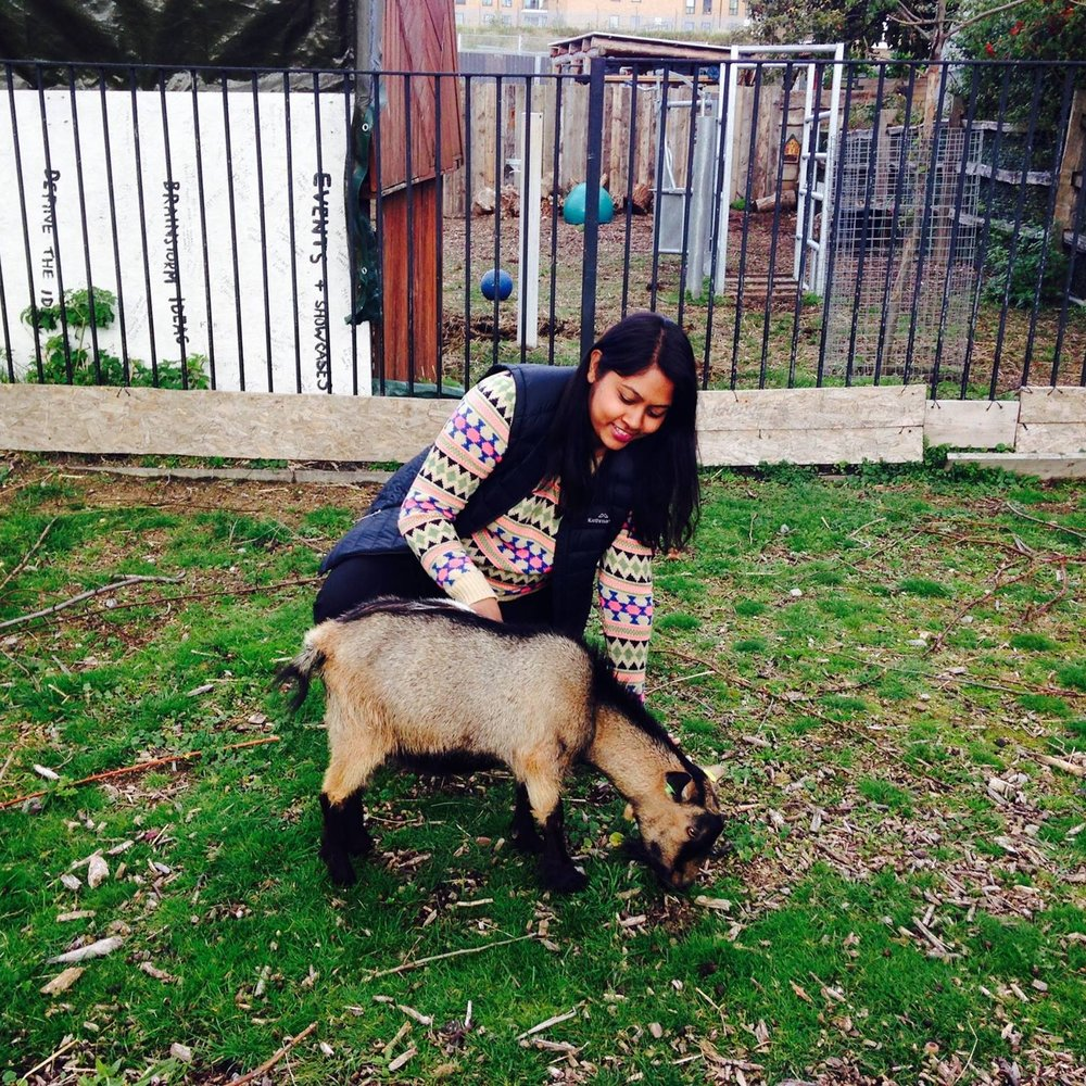 SHAIRA BEGUM   Soil Sisters Therapeutic Gardener   Shaira has over 6 years of experience of working in environmental education, schools and community development projects. Having worked in city farms, nature reserves and community gardens across London, Shaira enjoys sharing first hand nature discoveries with communities. Having lived in East London all her life she is keen to support communities in urban areas to take ownership of their local green spaces, and support them in becoming change makers.