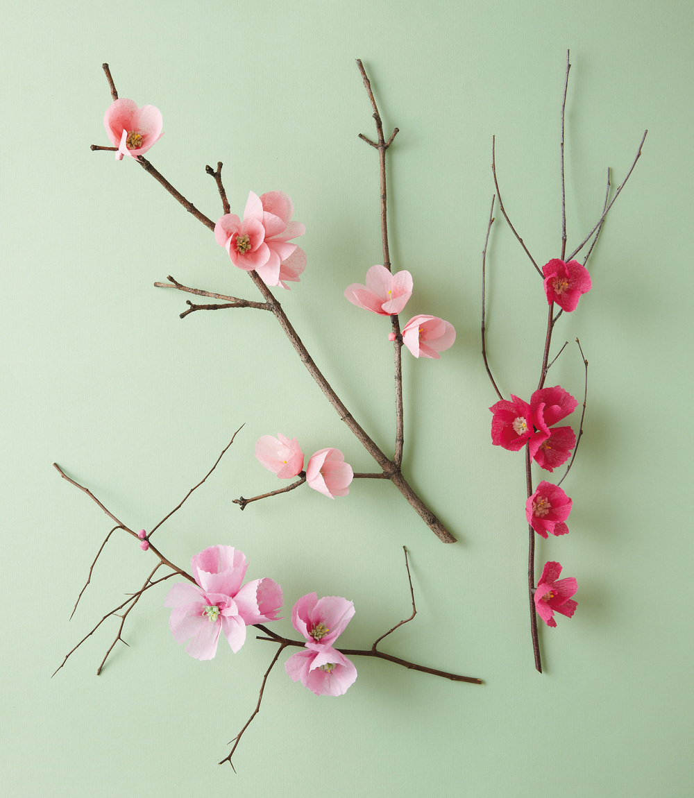 Todays Bloom The Exquisite Book Of Paper Flowers Abrams Craft