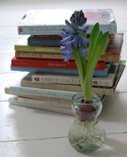 Hyacinths-for-Blogs-2.jpg