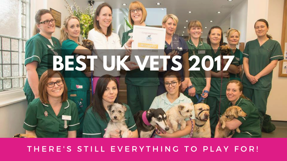 Best UK Vets Awards 2017