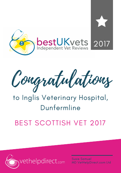 Inglis Vets, Best Scottish Vet