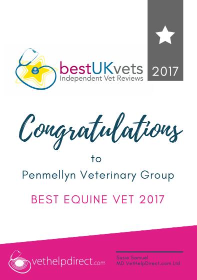 Penmellyn Vets, Best Equine Vets