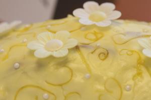 Cake_1.png