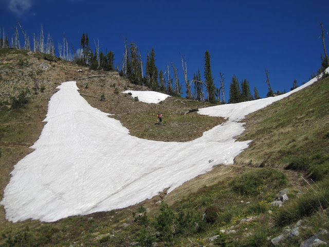 snowfield_IndianRidge2010_BNF.jpg