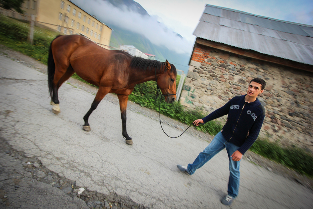 Kazbegi . Local boy with his horse.