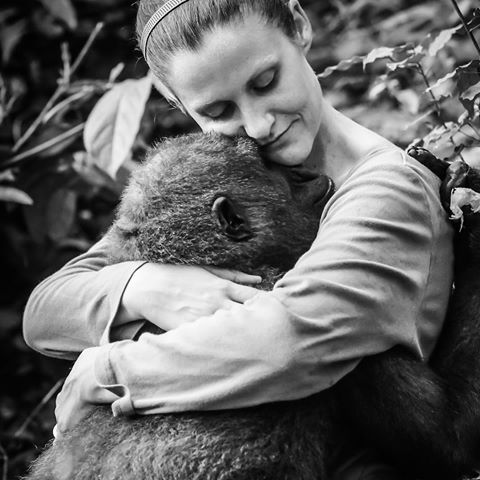 Rachel Hogan - How One Orphaned Gorilla Inspired Her to Save Hundreds More