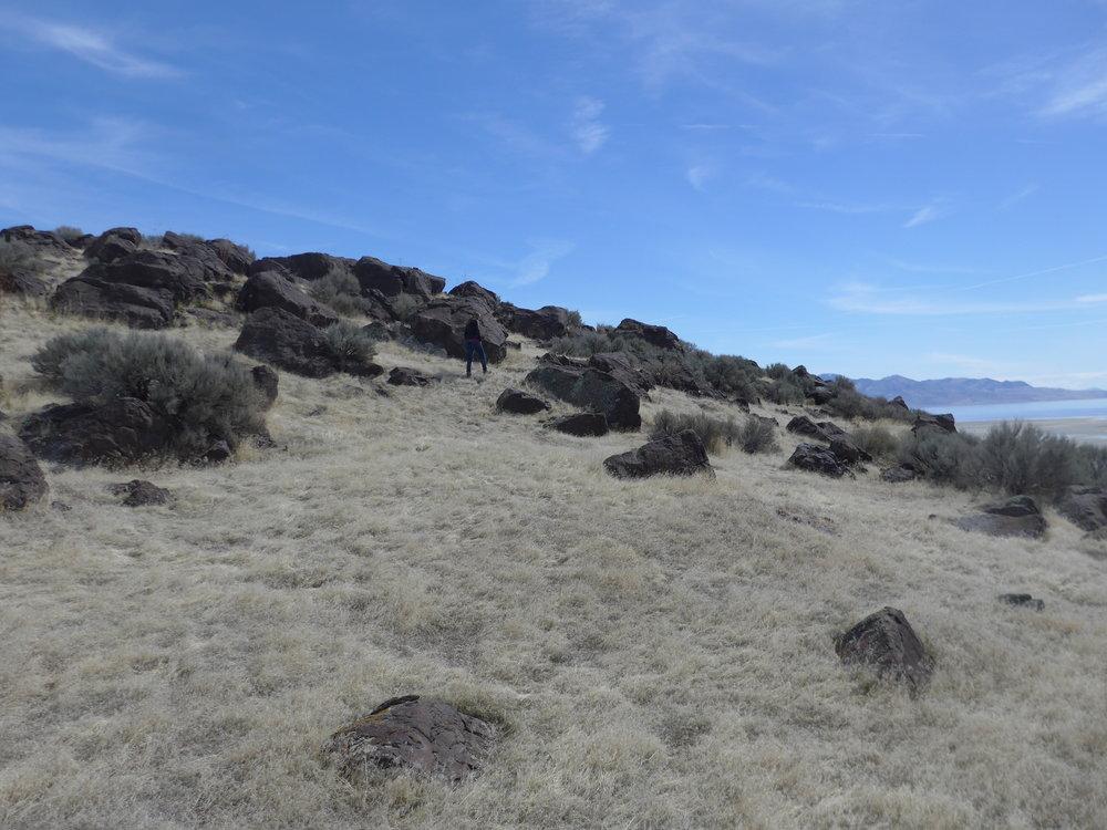 07-Desert Image.JPG
