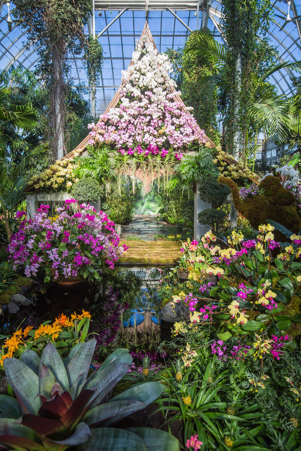 11 NYBG Orchid Show 2017.jpg
