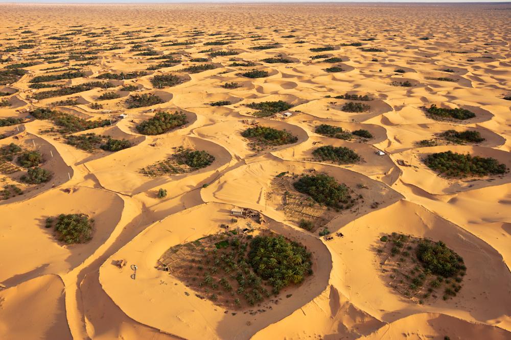 Adjder Oasis, Algeria.