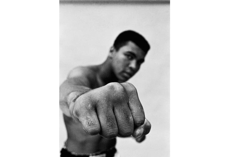 Ali Fist