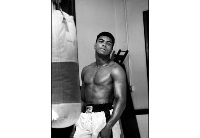 Ali training