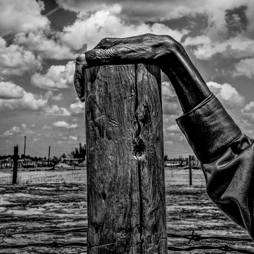 Fence post. Allensworth, CA.  Inquire about this image