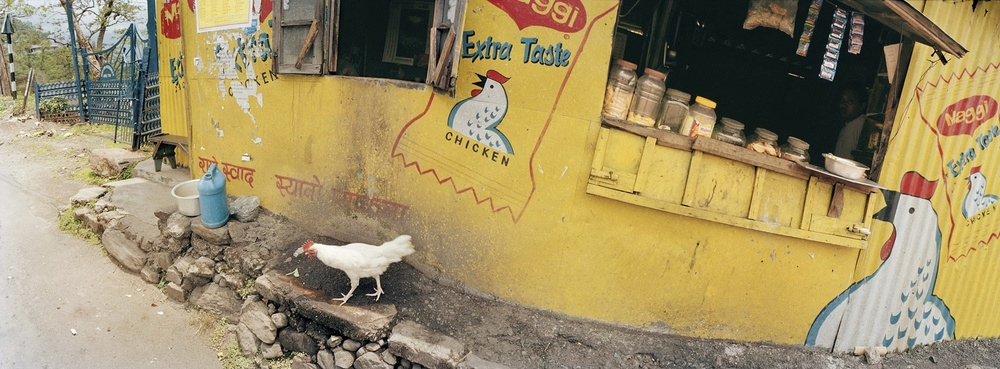 India, Darjeeling, Chicken Taste, 2002