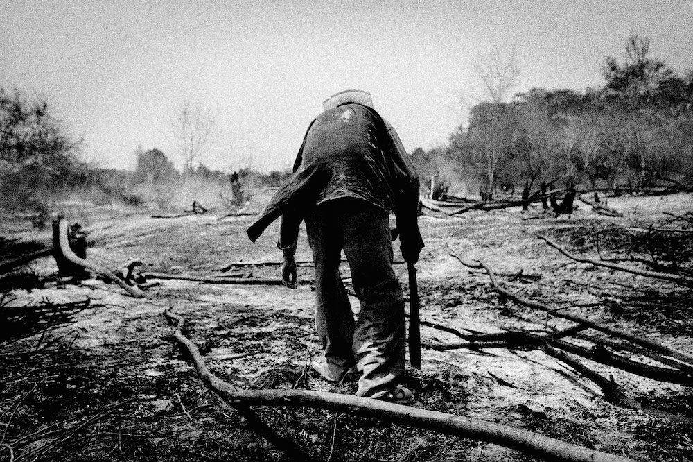 Clearing a field after burning. El Ciruelo, Mexico. 2007.   Inquire about this image
