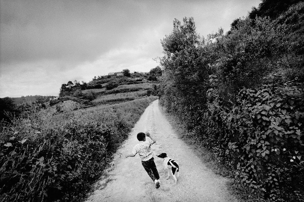 A boy plays with his dog. San Miguel Cuevas, Mexico. 2006.   Inquire about this image
