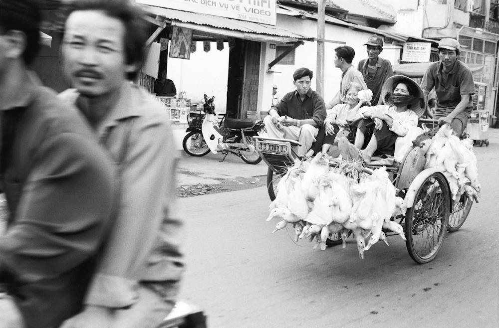 Like many entrepreneurs in this city, a villager uses a cyclo to bring in her geese for sale at the market. 1994.    Inquire about this image