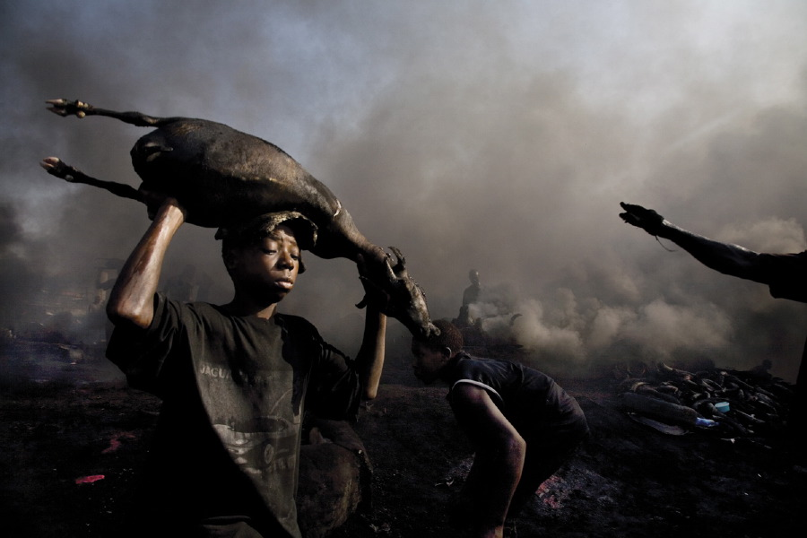 A boy carries the freshly killed carcass of a goat at the Trans Amadi Slaughter, which is the largest abatoir in the Niger Delta. Nigeria, June 2006.   Inquire about this image