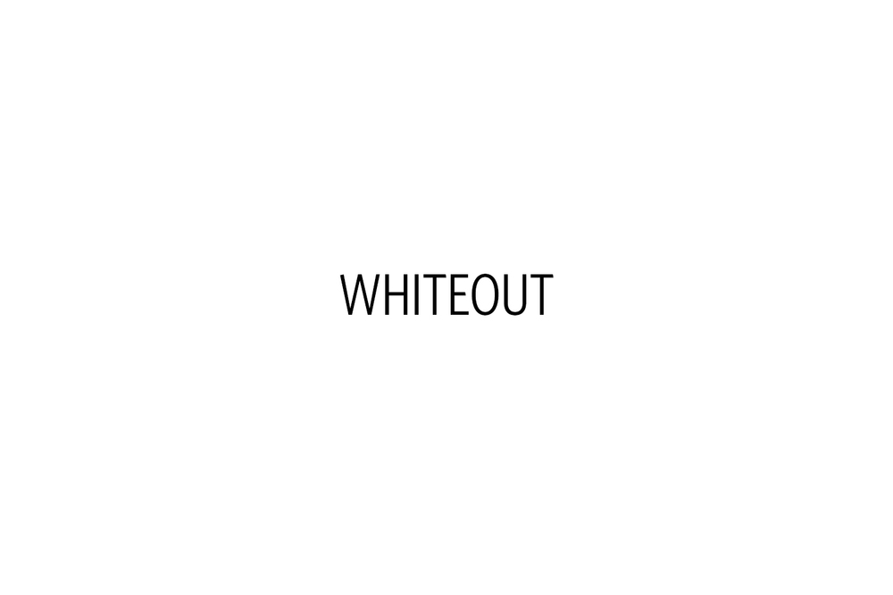 DinaLitovsky_Whiteout_Title.jpg
