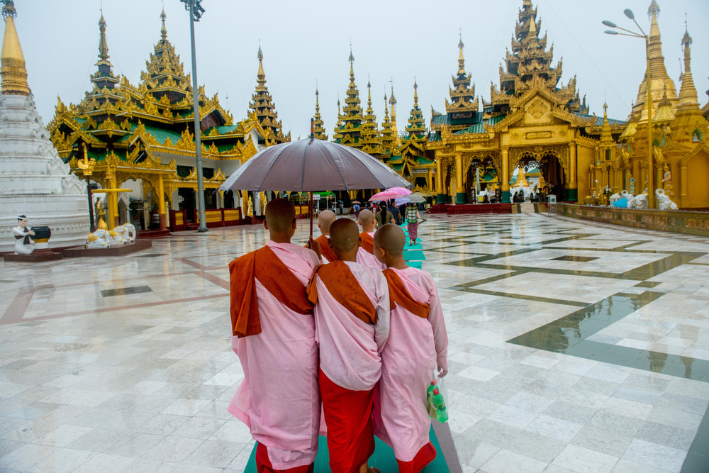 A group of Buddhist nuns tour the Shwedagon Pagoda (Great Dragon Pagoda) in Yangon. Shwedagon is a major attraction for both tourists and locals.    Inquire about this image