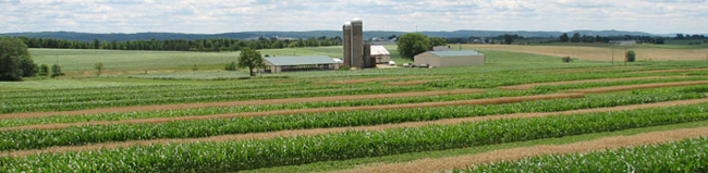 farming systems trial