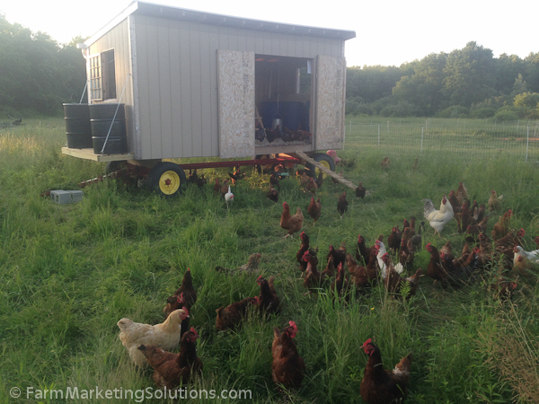 starting a farm-2452