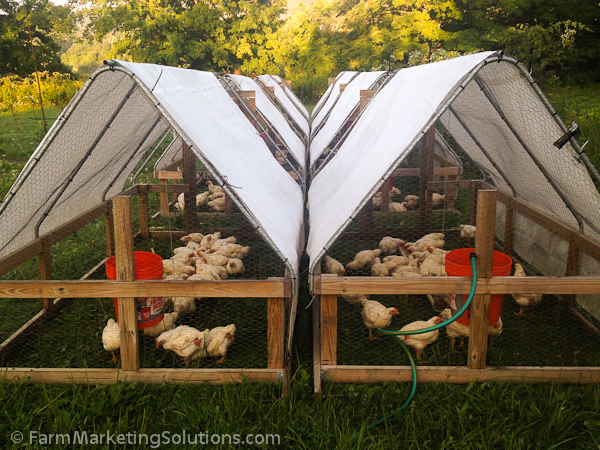 hop farming-3127