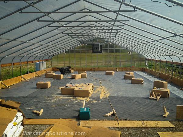 starting a farm-3549