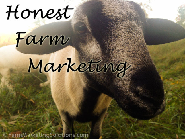 honest farm marketing sheep
