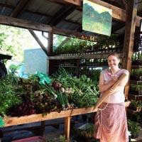 courtney sullivan humble hill farm