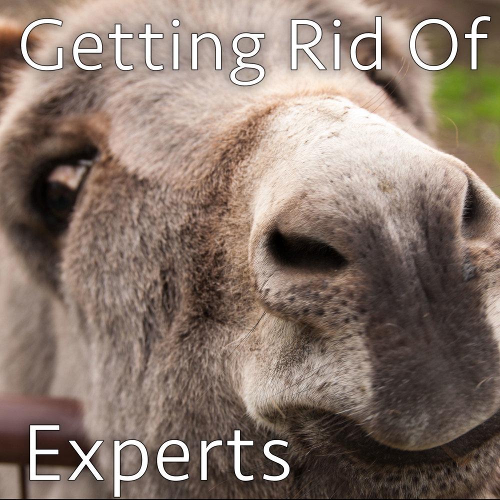 getting-rid-of-experts.jpg