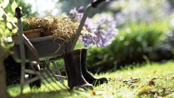 main_gardening_0.jpg