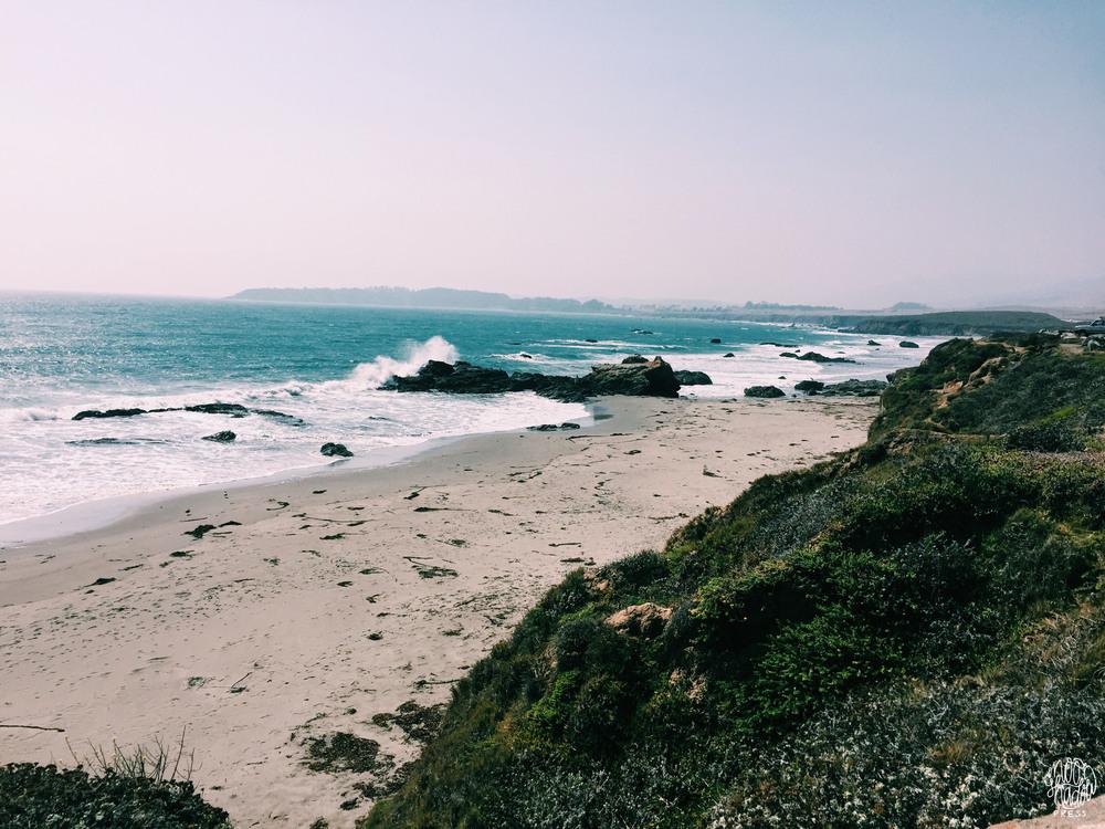 Coast_16L.jpg