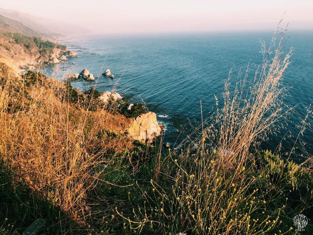 Coast_12L.jpg