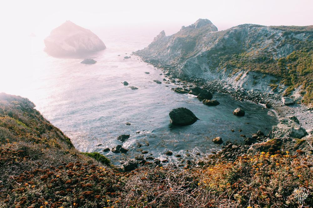 Coast_33L.jpg