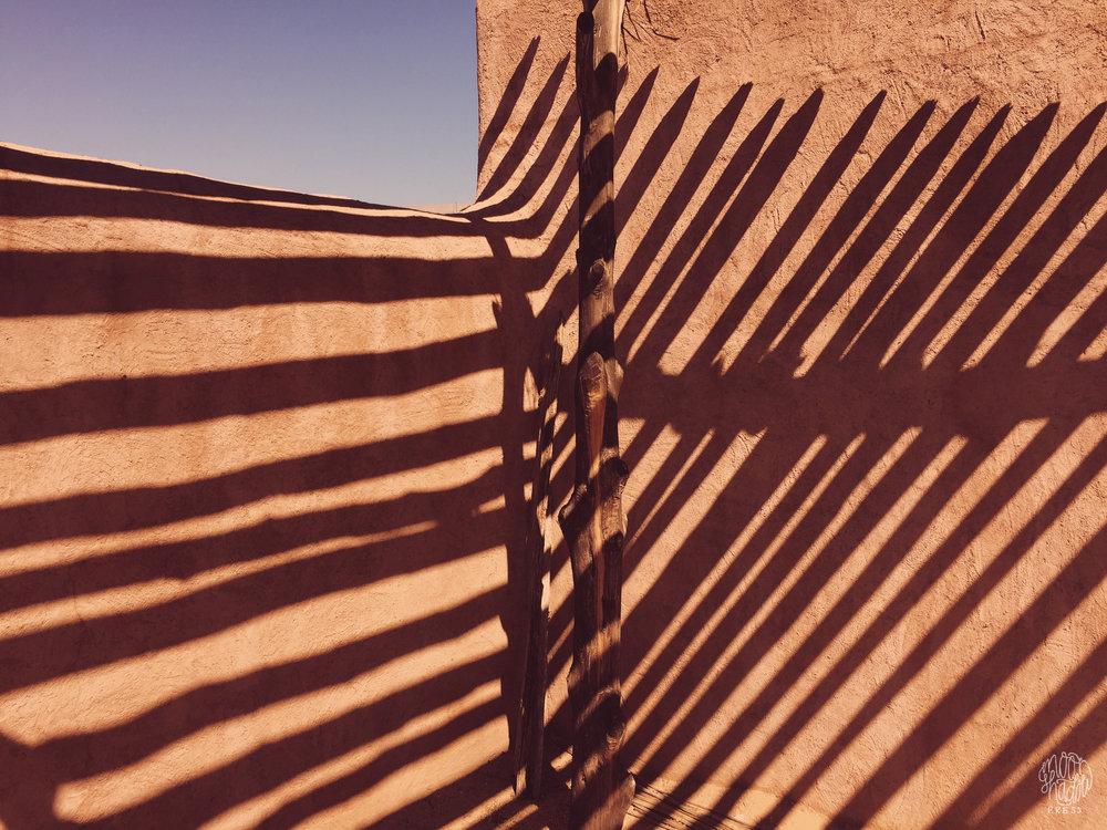 Phoenix16_L.jpg