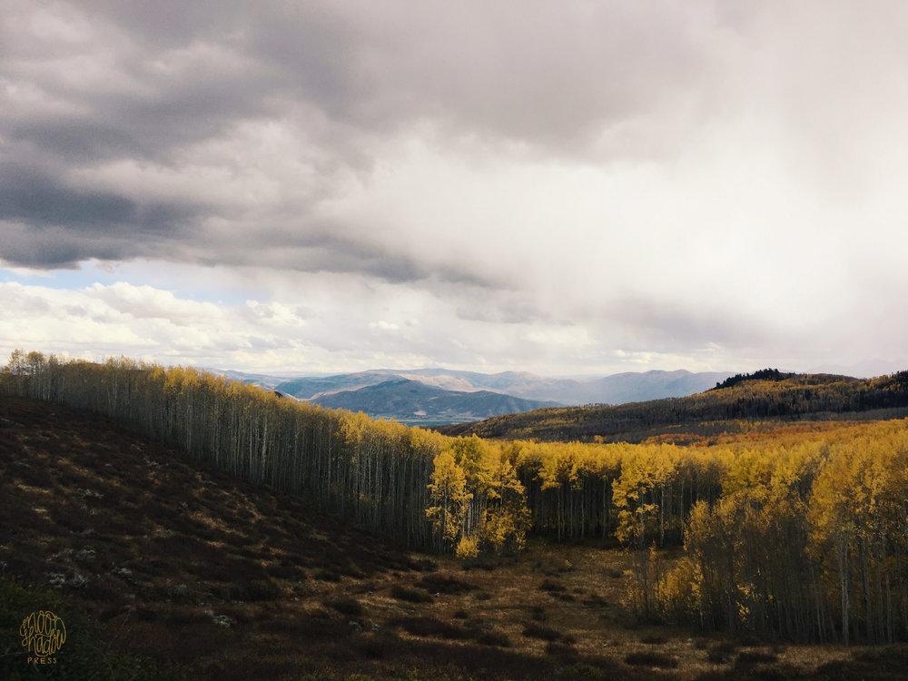 A_Utah_L1.jpg
