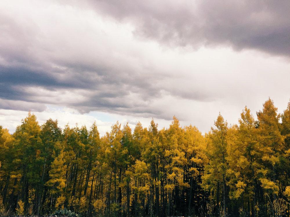 A_Utah_L4.jpg