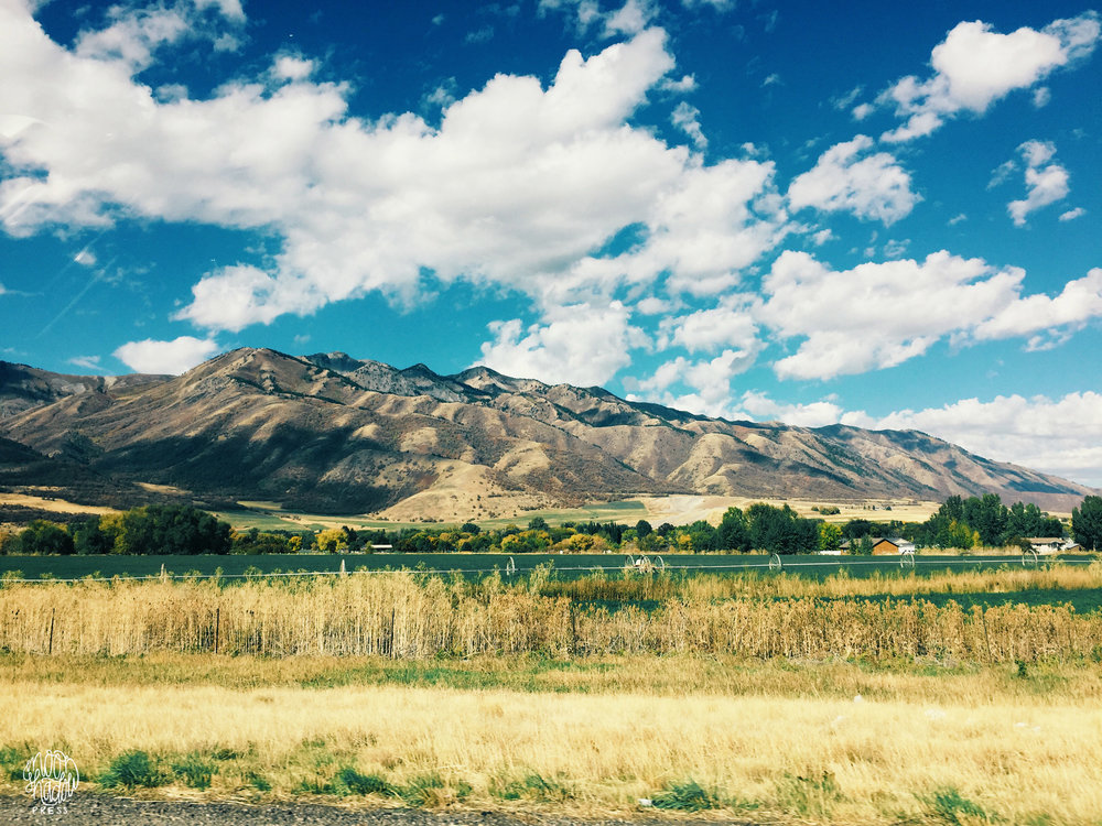 A_Utah_L12.jpg